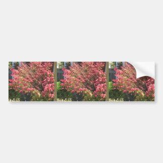自然は花の木の緑の秋季色を愛します バンパーステッカー
