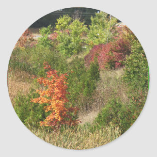 自然は花の木の緑の秋季色を愛します ラウンドシール