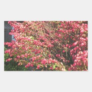 自然は花の木の緑の秋季色を愛します 長方形シール
