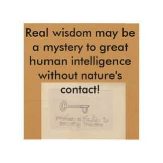 自然はasecretの人間の学校です ウッドウォールアート