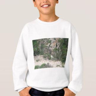 自然場面: 砂、石、木、渓谷 スウェットシャツ