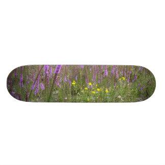 自然板 21.6CM スケートボードデッキ