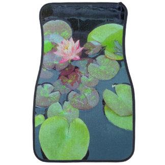 自然-スイレンの浮いている葉のカエル カーマット