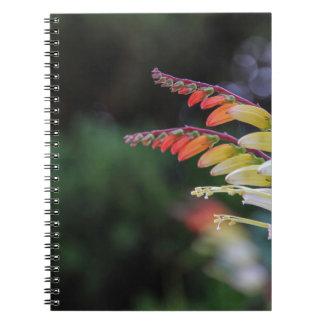 自然 ノートブック