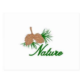 自然 ポストカード