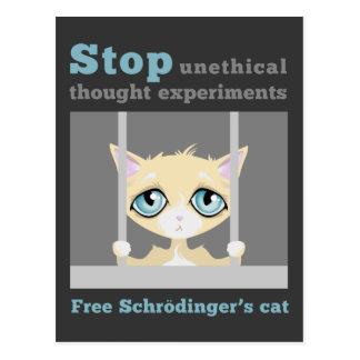 自由なSchrodingerの猫 ポストカード