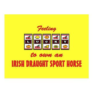 自身に幸運アイルランドの草案のスポーツの馬 ポストカード