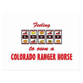 自身に幸運コロラド州のレーンジャーの馬のおもしろいのデザイン ポストカード