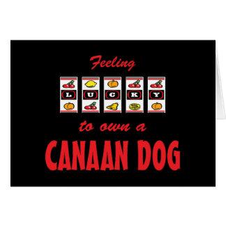 自身に幸運Canaan犬のおもしろい犬のデザイン グリーティングカード