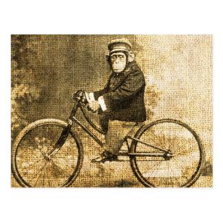 自転車のヴィンテージのチンパンジー ポストカード