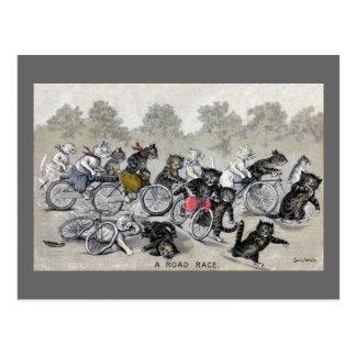 自転車の乗馬猫 ポストカード