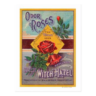 臭気のバラの魔法使いハシバミLabelFrankfort、NY ポストカード