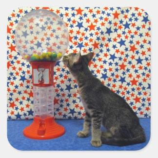 興味-主演のKori救助の子猫 スクエアシール