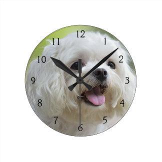 舌を突き出ている白いマルタ犬 ラウンド壁時計