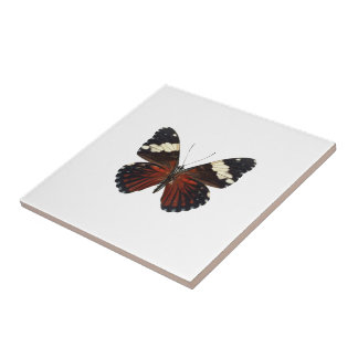 色のブラウンの蝶 タイル