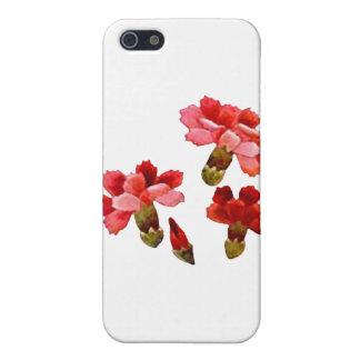 色彩の鮮やかで赤い及びピンクのカーネーション iPhone 5 COVER