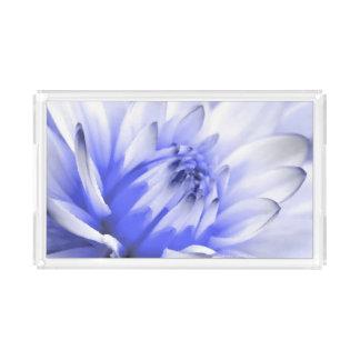 色彩の鮮やかで青および白い花 アクリルトレー