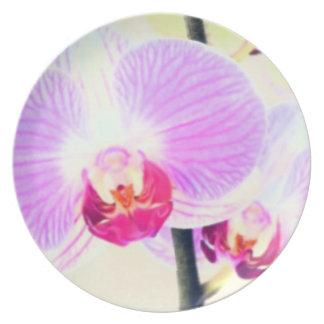 色彩の鮮やかなピンクの蘭のプレート プレート
