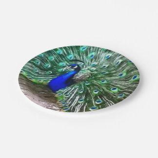 色彩の鮮やかな孔雀 ペーパープレート