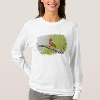 色彩の鮮やかな旗布のPasserinaのcirisの)男性に歌うこと Tシャツ
