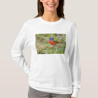 色彩の鮮やかな旗布(Passerianのciris)の男性に食べ物を与えること Tシャツ