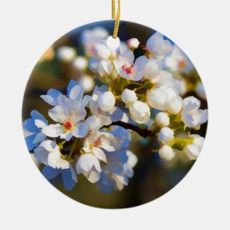 色彩の鮮やかな春の咲くブラッドフォードのナシの花 セラミックオーナメント