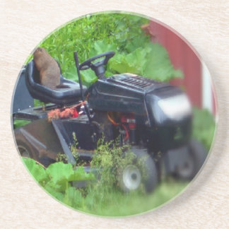 芝刈機のGroundhog コースター