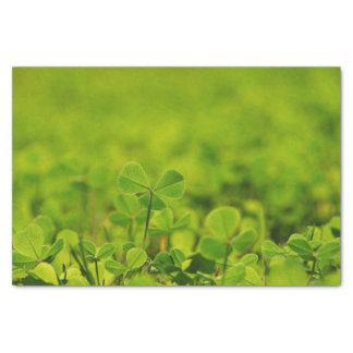 芝生のクローバーの葉が付いているティッシュペーパー 薄葉紙
