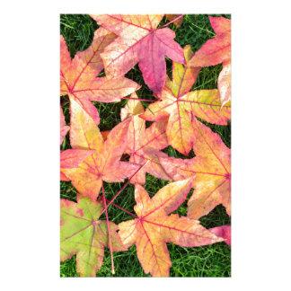 芝生の多くの多彩な秋のかえでの葉 便箋