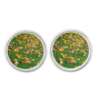 芝生の紅葉 カフリンクス