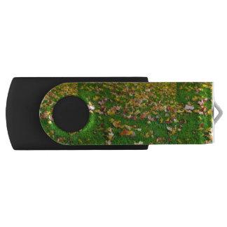 芝生の紅葉 USBフラッシュドライブ