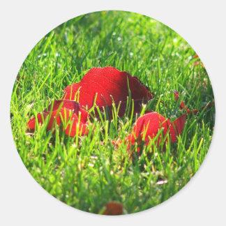 芝生の赤の葉 ラウンドシール