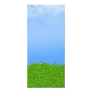 芝生及び青空の背景 ラックカード