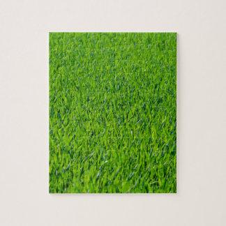 芝生 ジグソーパズル