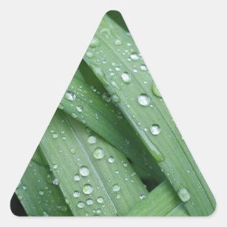 芝生 三角形シール