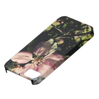 花いっぱいの焦点 iPhone SE/5/5s ケース