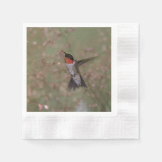 花から飲んでいるルビー色のThroatedハチドリ 縁ありカクテルナプキン