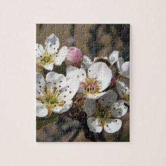 花が付いているりんごの木の枝 ジグソーパズル