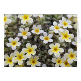 花が付いているカード カード