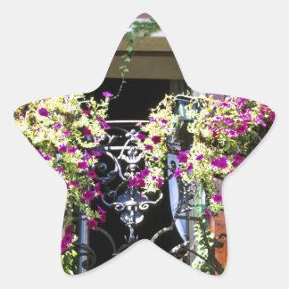 花が付いているバルコニー 星シール