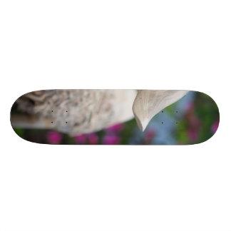 花が付いている木のアヒルの頭部 スケートボード