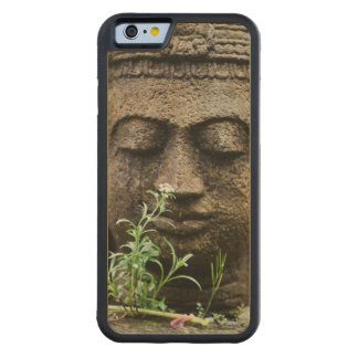 花が付いている石造りの庭の彫像 CarvedメープルiPhone 6バンパーケース