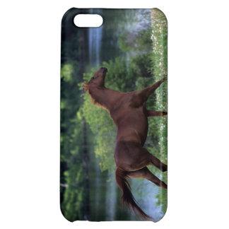 花に立っている純血種の馬 iPhone 5C CASE