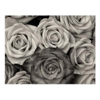 花のかわいらしい白黒バラの花束 ポストカード