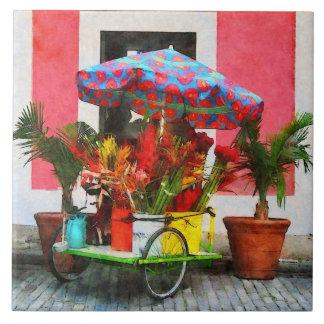 花のカートサンファン、プエルトリコ タイル