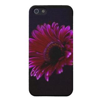 花のガーベラのSpeckの場合 iPhone SE/5/5sケース