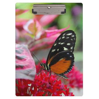 花のクリップボードのオレンジおよび黒い蝶 クリップボード