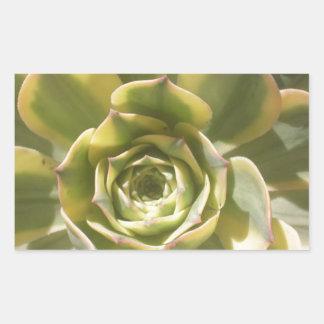 花のサボテン 長方形シール