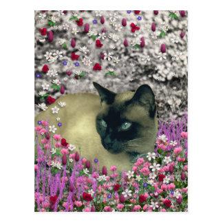 花のステラI -チョコレートクリーム色のシャム猫 ポストカード