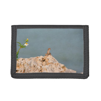 花のトカゲが付いているholey石の茶色のanole ナイロン三つ折りウォレット